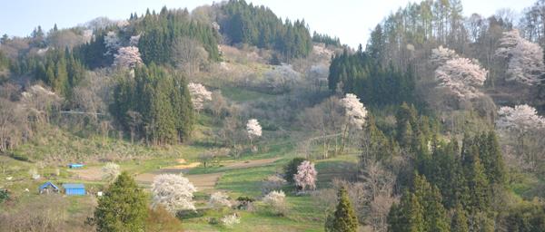 小川村1.jpg
