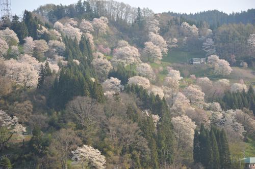 小川村3.jpg
