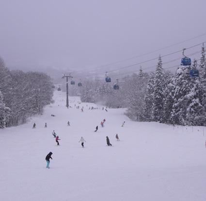 杉の原スキー場1.jpg