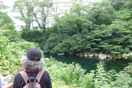 7神秘な池.jpg