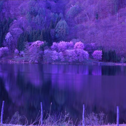 中綱湖.jpg