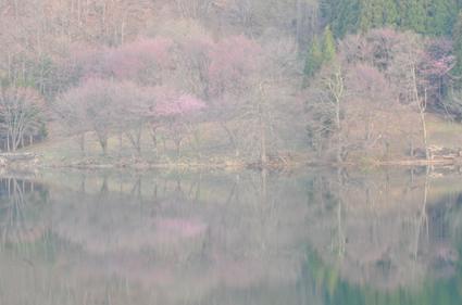 中綱湖1.jpg